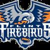 Flint Firebirds